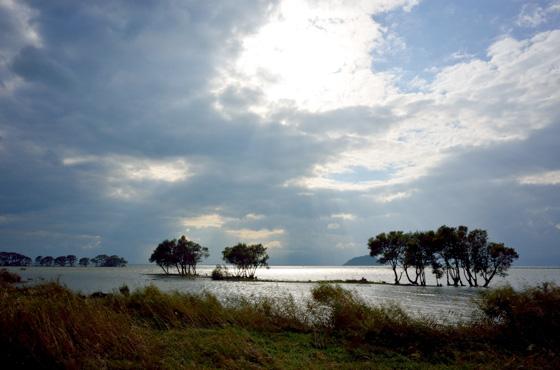 湖北水鳥センター前の景色