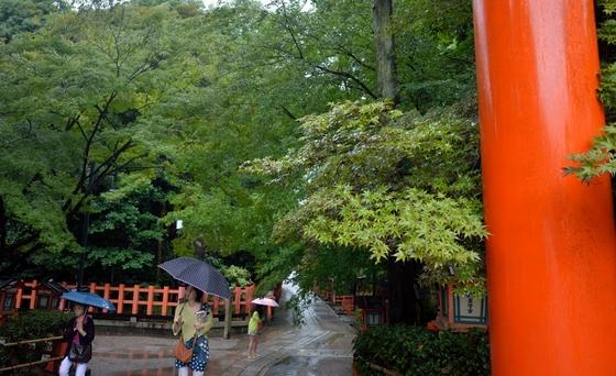 八坂神社の木々