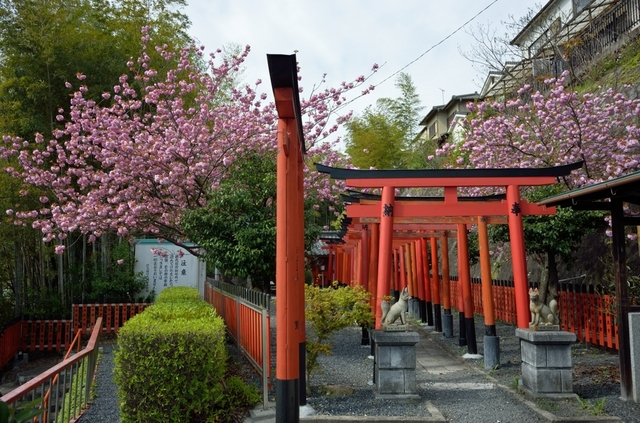 徳丸稲荷神社