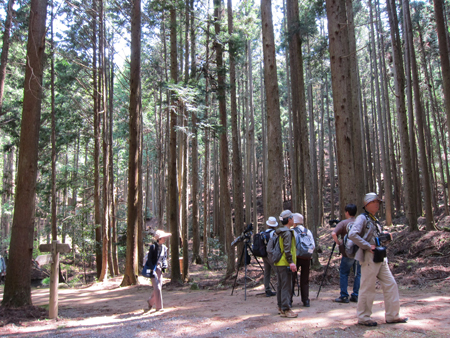 ささやまの森公園