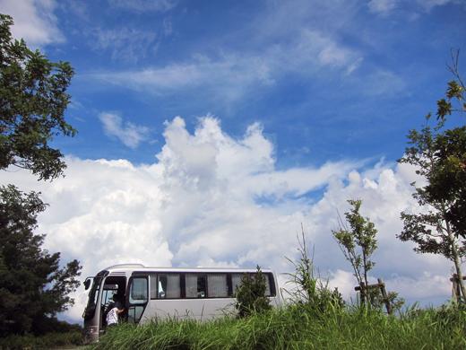 小型バスで鳥見