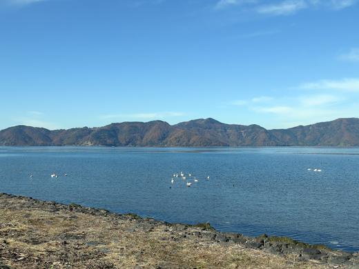びわ湖沿い
